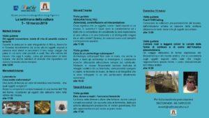 Settimana della Cultura * Martedì al Museo @ Museo delle Civiltà   Roma   Lazio   Italia